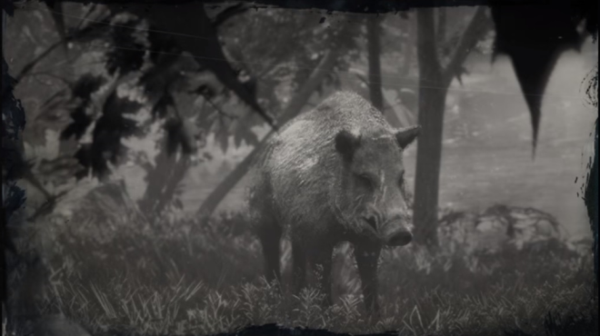Red Dead Redemption: General - LAWF# 1 Legendary Animals and Where to Find Them image 22