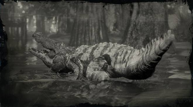 Red Dead Redemption: General - LAWF# 7 Legendary Bull Gator image 1