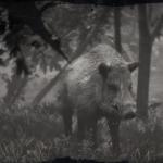 LAWF# 5 Legendary Boar