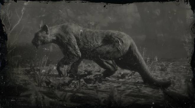 Red Dead Redemption: General - LAWF# 17 Legendary Giaguaro Panther image 2