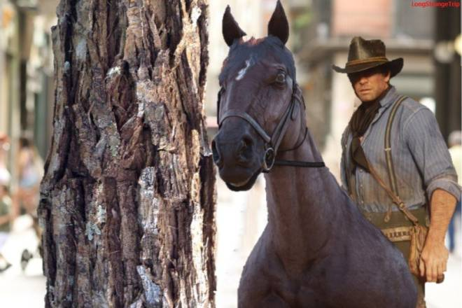 Red Dead Redemption: General - Distracted Horse image 1