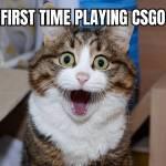 The csgo story