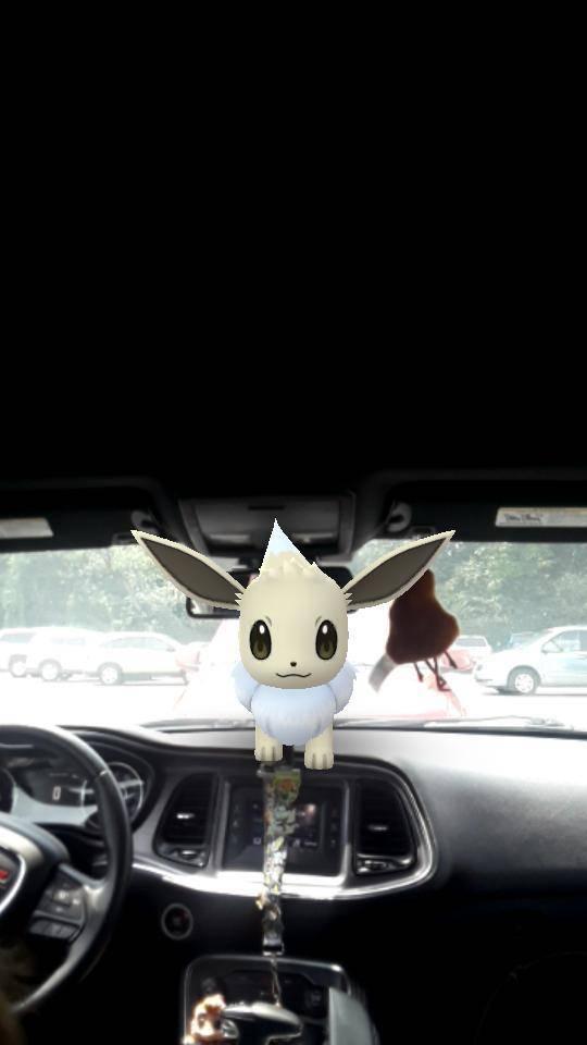 Pokemon: General - Shiny boy image 2