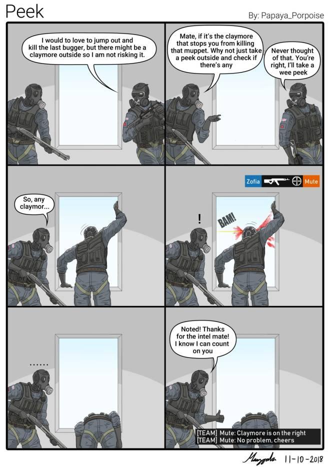 Rainbow Six: Memes - Peek image 1