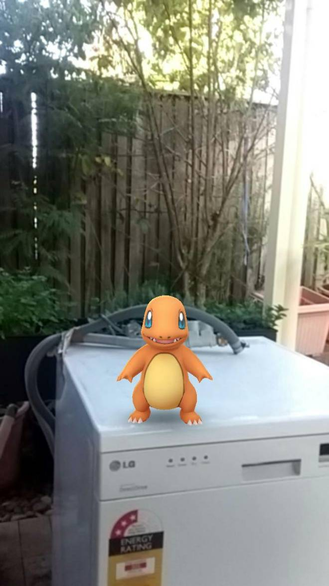 Pokemon: General - Is this weird? ?????????? I found these at my house image 2