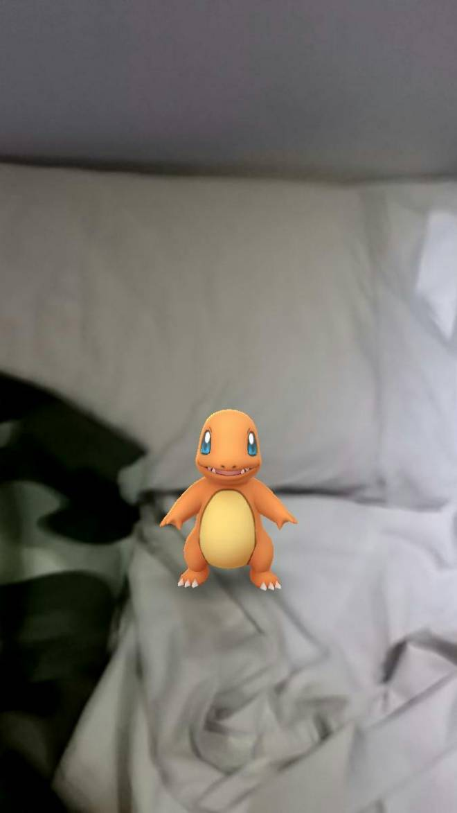Pokemon: General - Is this weird? ?????????? I found these at my house image 1