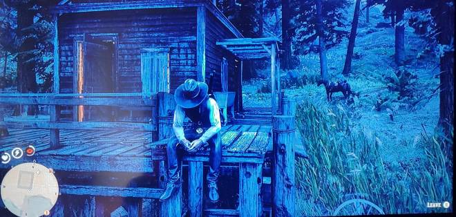 Red Dead Redemption: General - When this is all you can do waiting on Cripps to set your camp  image 1