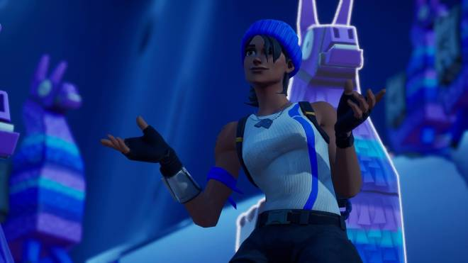 Bold And Blue Blue Team Leader Showcase Fortnite