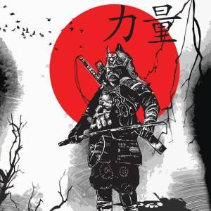 visual shogun