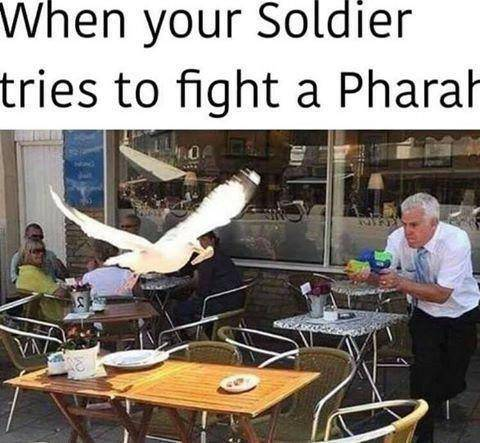 Overwatch: Memes - All The Memes image 26