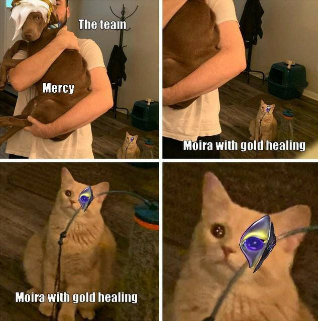 Overwatch: Memes - All The Memes image 28