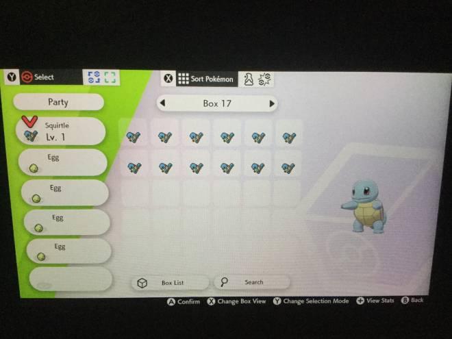 Pokemon: Pokémemes - Shiny squirtle On The 13th Egg!! image 3