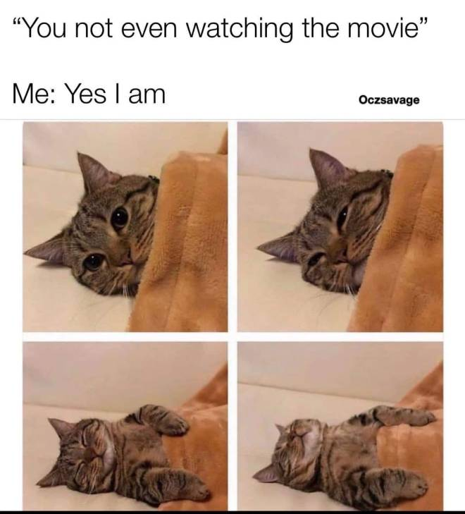 Entertainment: Memes - Netflix and sleep image 2