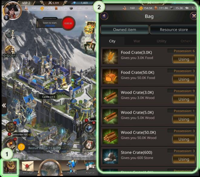 VERSUS : REALM WAR: Game Guide - ▣ Bag  image 2