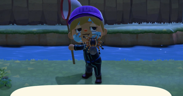 Animal Crossing: Posts - [Tip] Need Bells? Try this Artificial Tarantula Island! image 2