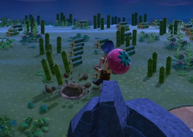 Animal Crossing: Posts - [Tip] Need Bells? Try this Artificial Tarantula Island! image 9