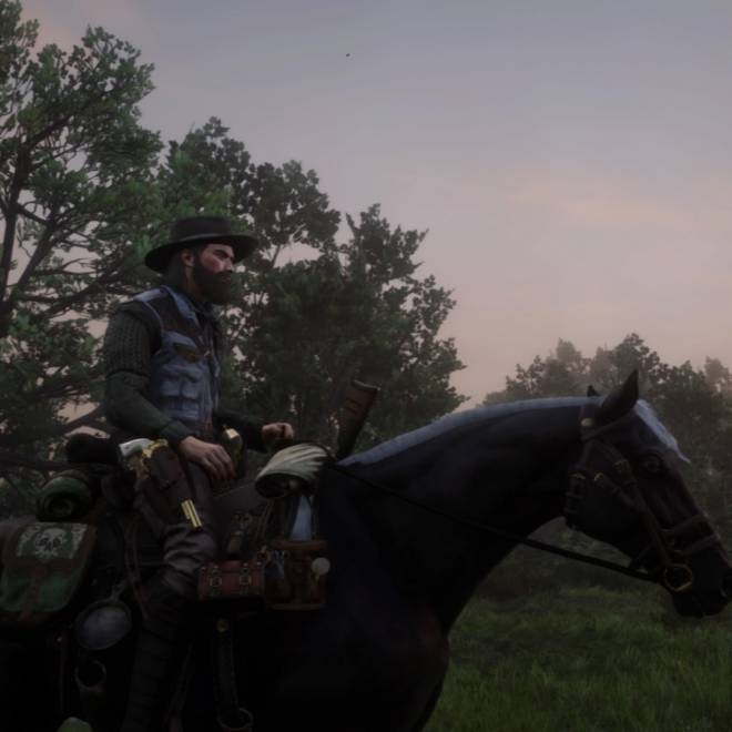 Red Dead Redemption: Memes - Well I change my character for the third time but i can now say I'm happy with it  image 1