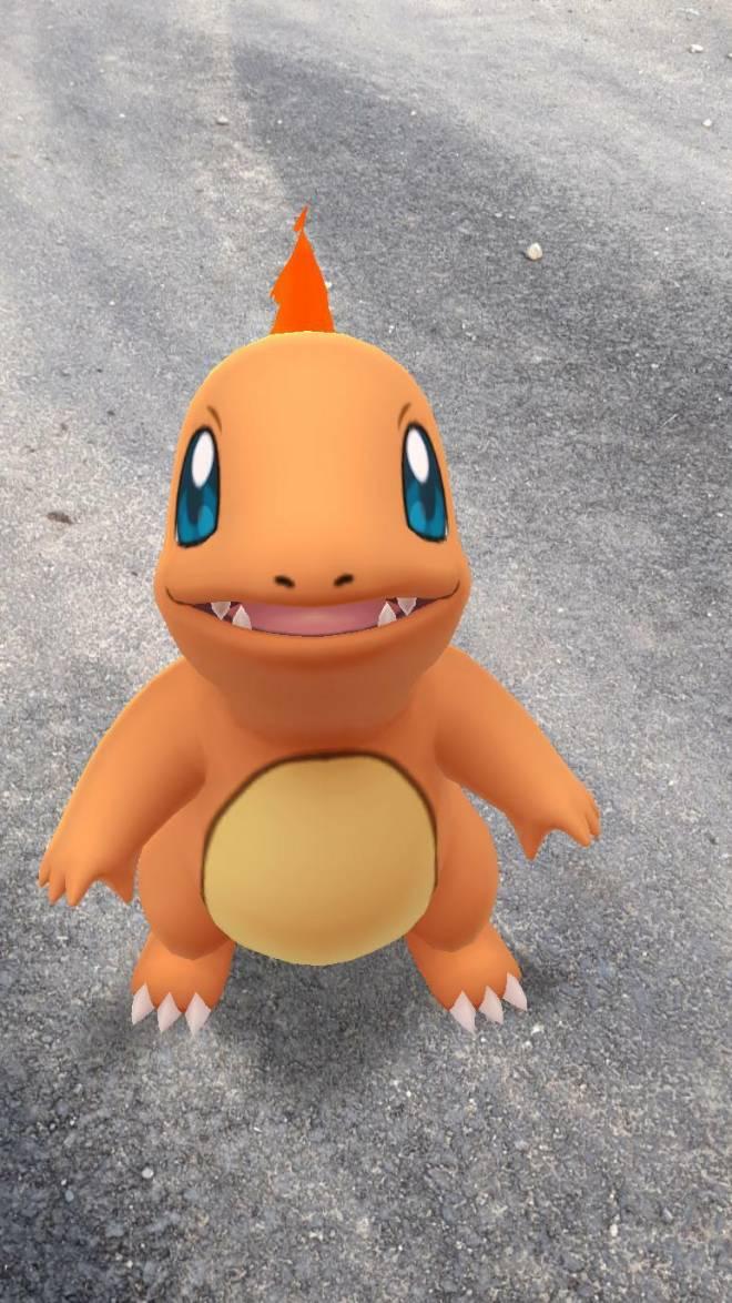 Pokemon: General - My charmender image 1