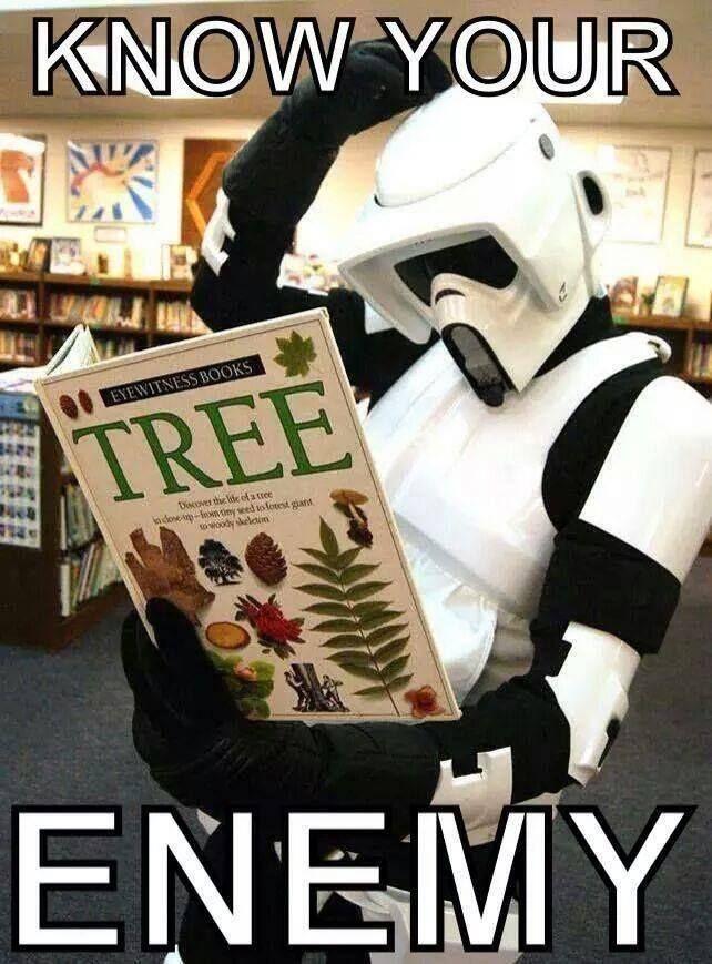 Star Wars: General - Star Wars memes XD image 10