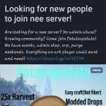Looking for a server to have fun?