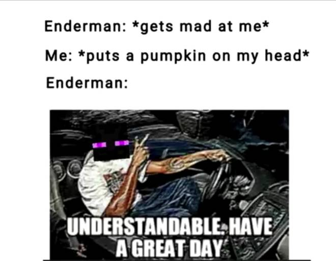 Minecraft: Memes - Understandable have a great day......  image 1