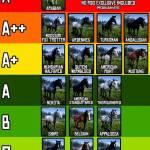 Horses tire list