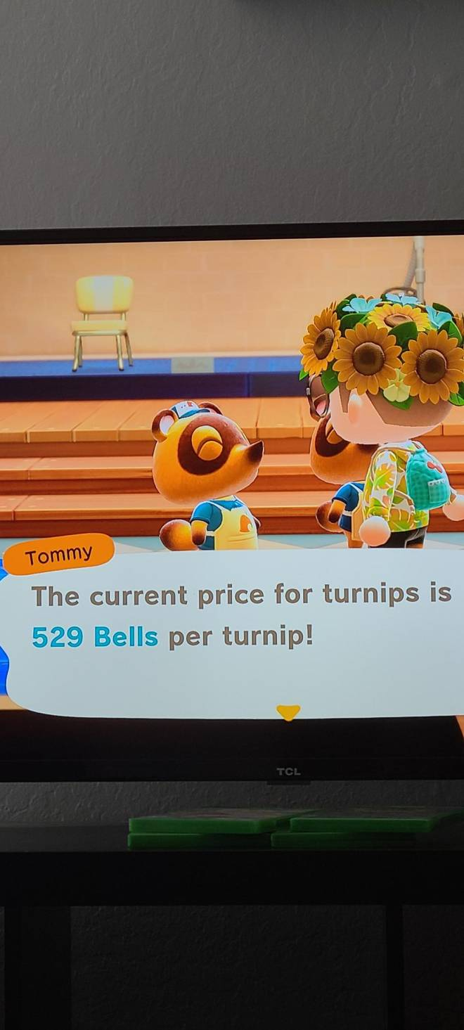 Animal Crossing: Turnips! - Amazing Turnip Price Ask for dodo code and bid a tip for entry i will be online for a while #turnip image 1