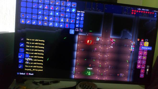 Terraria: General - How is it not valid?  image 2