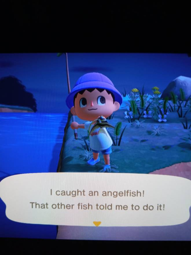Animal Crossing: Posts - Is This A Rare Fish?, Sorry Im Kinda A Noob.😐 image 1