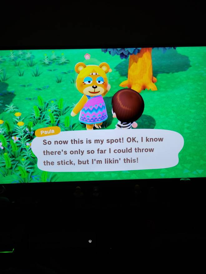 Animal Crossing: Posts - Started over my island today..any pointers? 😁 image 3