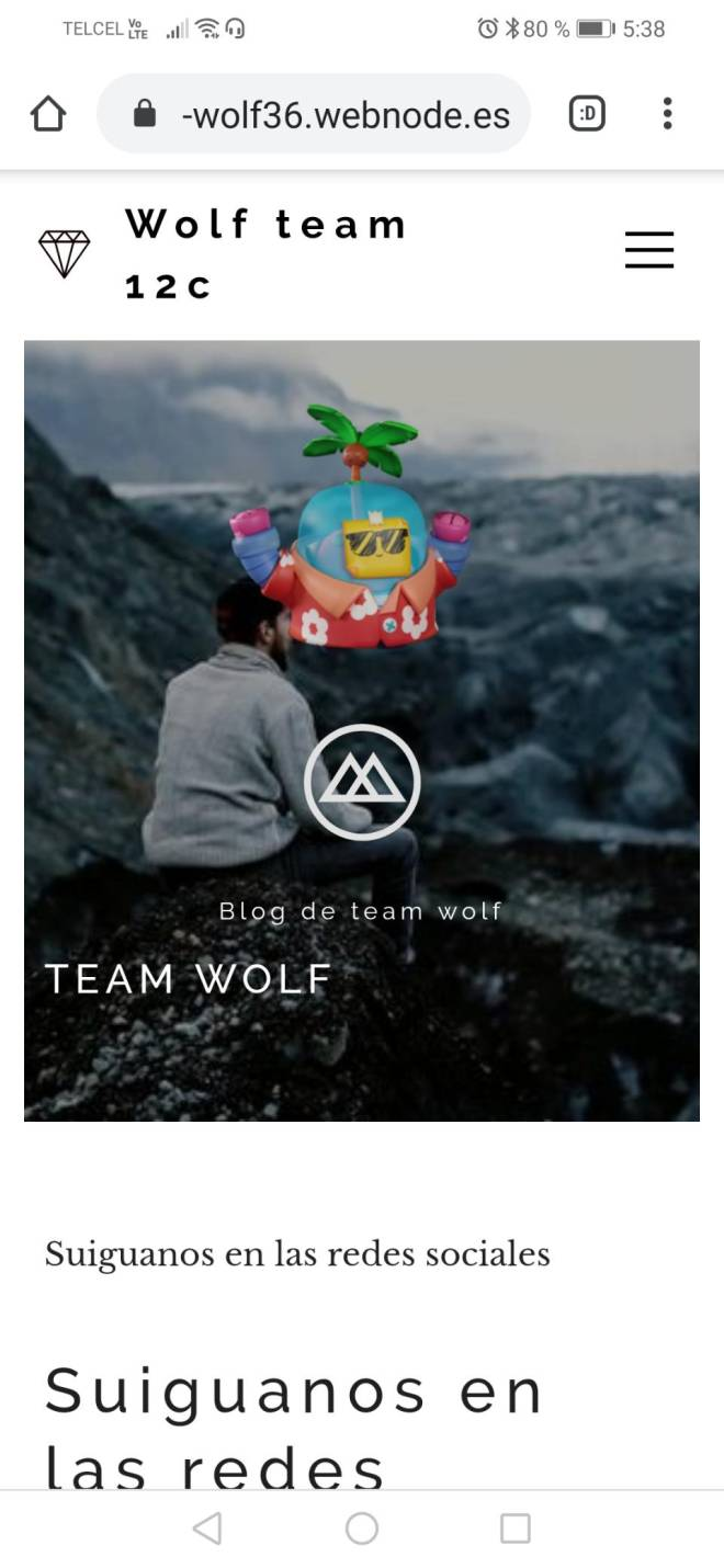 Q&A: Question - Team wolf image 3