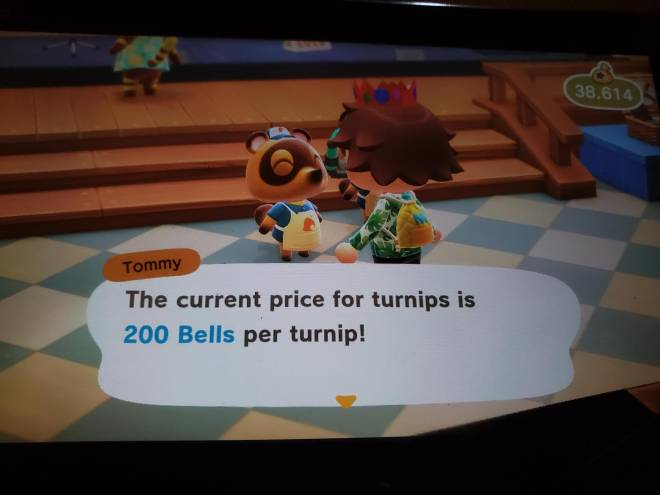 Animal Crossing: Turnips! - Turnips are at 200 image 2