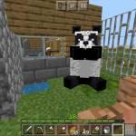 My pet panda named Po 🐼🐼