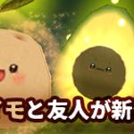 ジャガイモと仲間たち販売中!!
