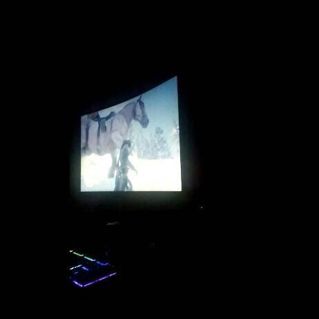 Red Dead Redemption: General - Sooooo big hourse image 2