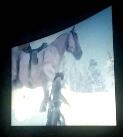 Red Dead Redemption: General - Sooooo big hourse image 1