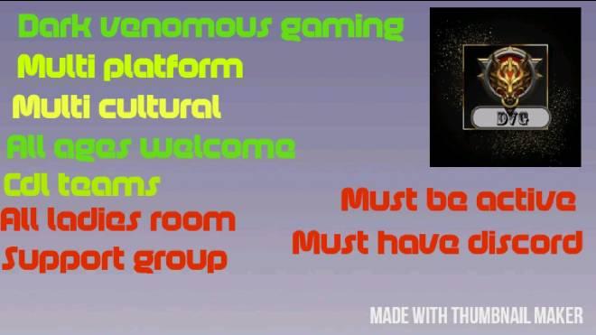 Paladins: General - DM for more info image 2