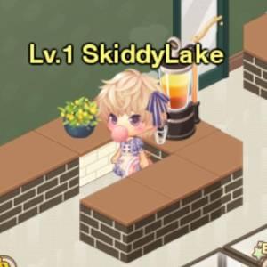 SkiddyLake