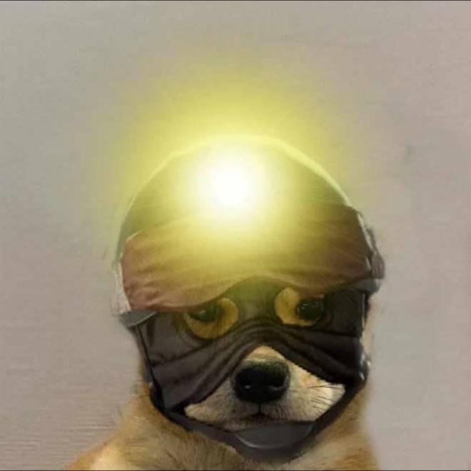 Rainbow Six: Memes - Ace doggo image 2
