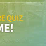 Lucid Adventure Quiz: It's OX Quiz Time!